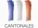 cantonales-Logo-officiel-Elections-2011.JPG